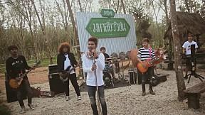 มหาลัยวัวชนMahalai Wua Chon(English Version) - วงพัทลุง พาราฮัท 【OFFICIAL MV】