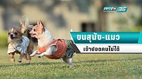 เข้าใจใหม่! ขนสุนัขหรือขนแมว ไม่สามารถเข้าสู่ปอดคนได้