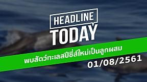 HEADLINE TODAY - พบสัตว์ทะเลสปีชี่ส์ใหม่เป็นลูกผสม