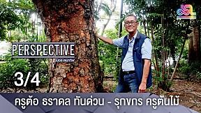 Perspective | ครูต้อ ธราดล ทันด่วน  รุกขกร ครูต้นไม้ [3\/4]