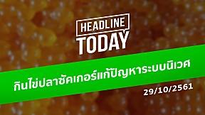 HEADLINE TODAY - กินไข่ปลาซัคเกอร์แก้ปัญหาระบบนิเวศ