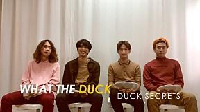 Duck Secrets 08 - De Flamingo