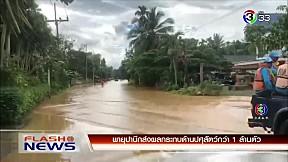 พายุปาบึกส่งผลกระทบด้านปศุสัตว์กว่า 1 ล้านตัว| FlashNews | 05-01-62 | Ch3Thailand