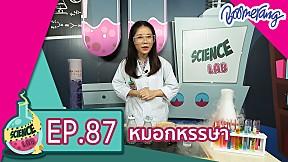 Science Lab แล็ปของเด็กช่างคิด | EP.87 หมอกหรรษา