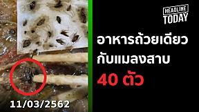 อาหารถ้วยเดียวกับแมลงสาบ 40 ตัว | HEADLINE TODAY