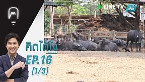 คิดได้ไง  | EP.16 | มูราห์ ฟาร์มควายนม (1\/3)