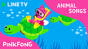 Under the Sea | Pinkfong Animal Songs