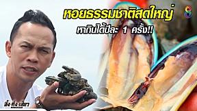 หอยเมืองจันทน์ หอยธรรมชาติ สด ใหญ่ เก็บกินได้ปีละครั้ง!! | อึ้งทึ่งเสียว | ช่อง8
