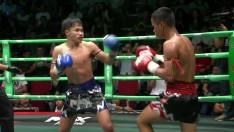 HIGHLIGHT | Promo 2020 | Muay Thai Fighter