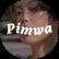 Pimwa TV