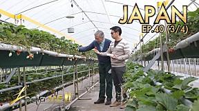 Leela Me I EP.40 ท่องเที่ยวประเทศ ญี่ปุ่น [3\/4]
