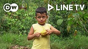 Going Green EP. 12 | Ecuador's Rainforest Cuisine