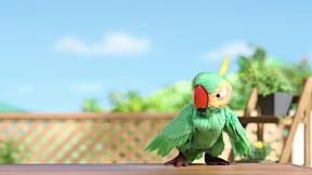 Botos Family   EP.6 A bird named \'Bud\'