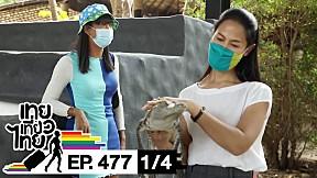 เทยเที่ยวไทย ตอน 477 | พาเที่ยว หัวหินซาฟารี [1\/4]