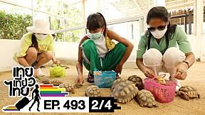 เทยเที่ยวไทย ตอน 493 | Road trip เพชรบุรี [2\/4]