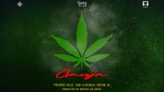GANJA (กัญชา) - Twopee Southside feat. แอ๊ด คาราบาว, DJTOB, IG [Official MV]