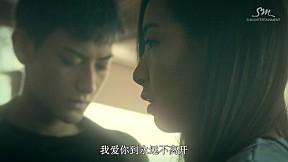 Zhang Li Yin - \