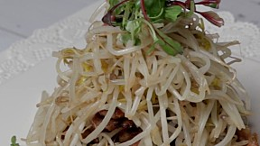 Pork with Stir-Fried Bean Sprouts
