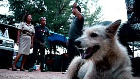 เรื่องจริงผ่านจอ | Slumdog หมากองขยะชะอำ ตอนที่ 2