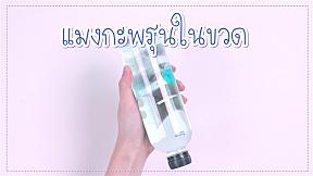 How to : ทำของเล่นจากของที่มีอยู่ในบ้าน กับ แมงกะพรุนขวดน้ำกันค่า
