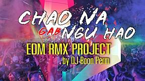 CHAO NA GAB NGU HAO (ชาวนากับงูเห่า) - EDM RMX Project by DJ Boon Perm