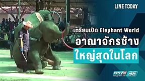 เตรียมเปิด Elephant World อาณาจักรช้างใหญ่สุดในโลก