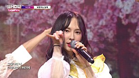 Show Champion EP.267 H.U.B - The Day The Cherry Blossoms Bloom