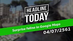HEADLINE TODAY - Surprise feline in Google Maps