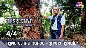 Perspective   ครูต้อ ธราดล ทันด่วน  รุกขกร ครูต้นไม้ [4\/4]