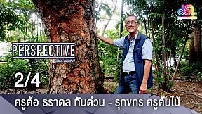Perspective | ครูต้อ ธราดล ทันด่วน  รุกขกร ครูต้นไม้ [2\/4]