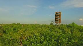 ตัวอย่าง รายการเจาะใจ   ศูนย์การเรียนรู้ป่ากลางกรุง