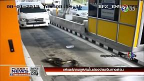 แห่แชร์ภาพงูหล่นในช่องจ่ายเงินทางด่วน   FlashNews   09-01-62   Ch3Thailand