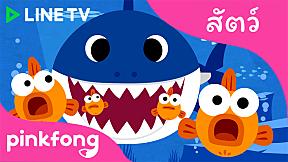 ลูกฉลาม | Pinkfong Animal Songs