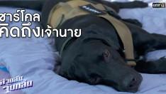 เรียกน้ำย่อย l ความผูกพันของคนกับสุนัข l EP.4