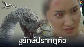 ช็อก! เจอคนกลายร่างเป็นงู  |  มณีนาคา ช่อง8 | HIGHLIGHT EP3