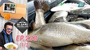 McDang's Travelogue | ฉะเชิงเทราแหล่งใหญ่ปลากะพง | 7 ธ.ค. 62 (1\/3)