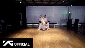 iKON - \'Dive\' Dance Practice Video
