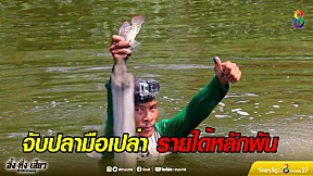 เทคนิคสุดเทพ จับปลามือเปล่า หาเงินได้หลักพันต่อวัน   อึ้งทึ่งเสียว   ช่อง8