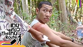กะเทยร้องกรี๊ดเลย! รวมฉากเจ็บตัว ล้มลุกคลุกเขี้ยว   เทยเที่ยวไทย