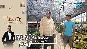เปิดตำนานกับเผ่าทอง ทองเจือ | ดอยคำ และ ธรรมชาติ ประเทศไทย | 28 มิ.ย. 63 (3\/4)