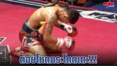 ต่อยโหดกระโดดเตะ!!! I Battle Muay Thai มวยไทย แบทเทิล