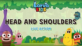 [Live Action] Larva KIDS | EP.9 Head and shoulders