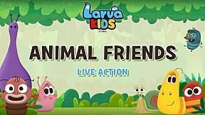 [Live Action] Larva KIDS | EP.2 ANIMAL FRIENDS