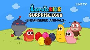 [Surprise Egg Series] Larva KIDS | EP.10 | ENDANGERED ANIMALS