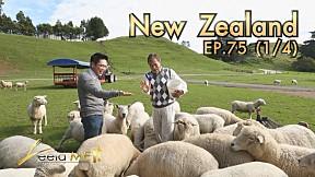 Leela Me I EP.75 ท่องเที่ยวประเทศนิวซีแลนด์ [1\/4]