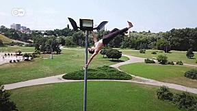 DW Beyond Limits EP.6 | Pole Dancing – By Next-level Athlete Dimitry Politov